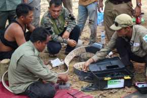 BBKSDS Riau Pasang GPS Collar