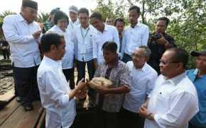 11 Desa Riau Dapatkan Pembinaan Peduli Gambut Dari Jokowi
