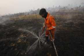 BBKSDA Riau Selidiki Perambah dan Pembakar Cagar Biosfer Giam Siak Kecil