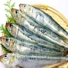 Siip, Ikan Sarden Cegah Masalah Jantung