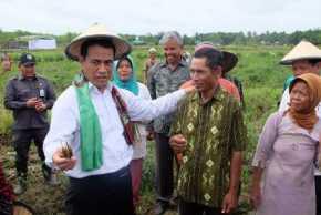 Mendarat di Riau Malam Ini, Menteri Pertanian Dijadwalkan Panen Raya Padi di Pelalawan