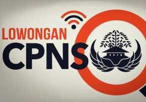 Formasi CPNS 2019, Begini Penjelasan Pemprov Riau