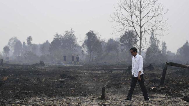 Jokowi yang Tak Berkutik Atasi Kebakaran Hutan
