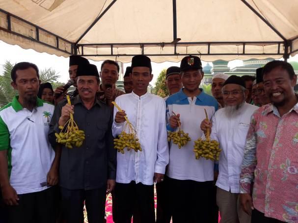 Syamsuar Panen Kurma di Masjid Agung An Nur Pekanbaru