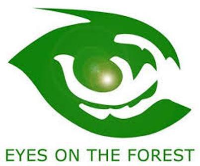 EOF Desak Polda Riau Tetapkan 49 Korporasi Sebagai Tersangka Karhutla