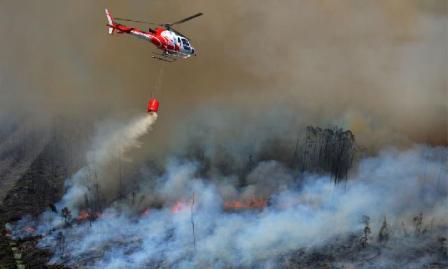 Tuntutan Rp 1 Triliun ke Pembakar Hutan Riau Belum Masuk Meja Hakim Agung