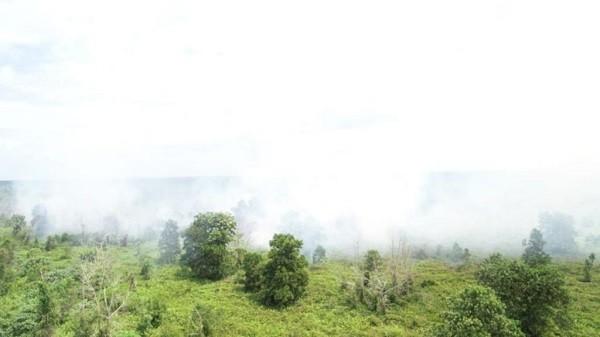 Provinsi Riau Diprediksi Kemarau 7 Bulan, DPRD Pekanbaru Ingatkan BPBD Siaga