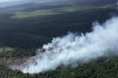 Satgas Karhutla Kesulitan Padamkan Api di 10 Kabupaten