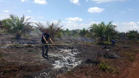 98 Kasus Kebakaran, Kepolisian Riau Tangkap 8 Orang Pembakar Lahan