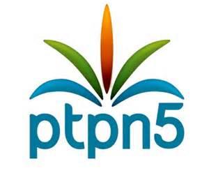 Sebagai Bentuk Kepedulian Terhadap Rakyat, PTPN V Bantu UKM Riau Rp635 Juta