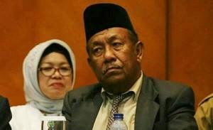 Gelar Adat Jokowi Sarat dengan Politik, Ini Kata  Wan Thamrin Hasyim