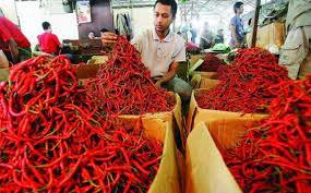 Harga Cabai Rawit di Pasar Cik Puan Sentuh Angka Rp 70 Ribu Per Kilogram