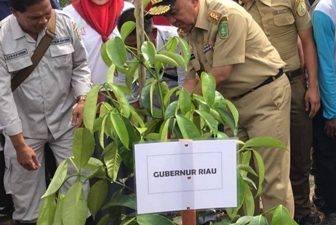 Gubri H Arsyadjuliandi Rachman Menanam Pohon Pada Hari Menanam Pohon Indonesia Tahun 2017