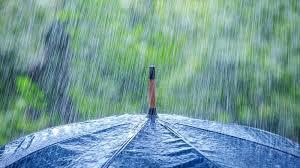 Malam dan Dini Hari Riau Berpotensi Hujan