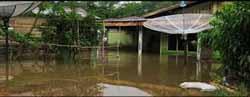 Amran : Tiga Kecamatan Di Kampar Banjir