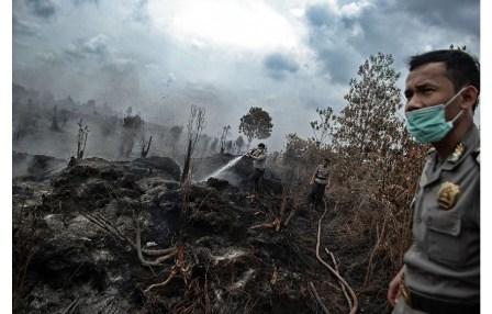 Jambore Gambut Nasional di Jambi, Petani Harus Jadi Pelopor Penyelamatan Gambut