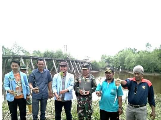 Peduli Lingkungan, BEM UR Tanam 1000 Bibit Pohon Mangrove di Desa Sinaboi, Rokan Hilir