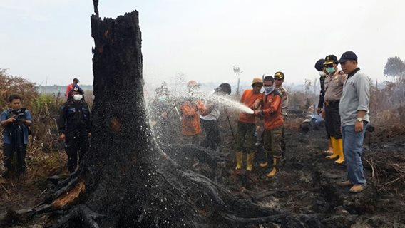 Riau Police Name 85 Suspects Over Wildfire Cases