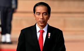 Presiden Jokowi dijadwalkan mendarat di Pekanbaru Hari Ini