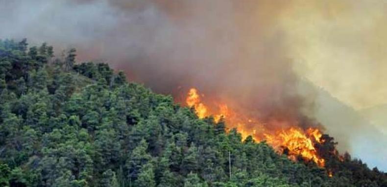 Waspada , 10 Titik Api Muncul di Kabupaten Pelalawan