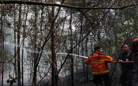 Polisi Belum Tetapkan Tersangka Pembakar Lahan di Universitas Riau