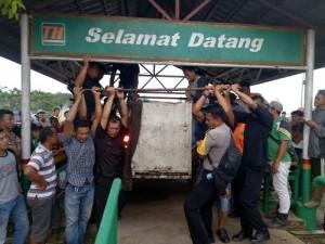 Harimau Bonita Dievakuasi ke Pusat Rehab HS di Sumbar