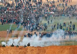 Liga Arab: Investigasi Kejahatan Israel ke Demonstran Gaza