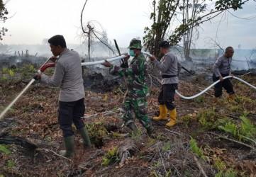 Tuntutan 4 Tahun Penjara dan Denda Rp3 Miliar untuk Pembakar Lahan 20x20 Meter, Kajati Harus Periksa