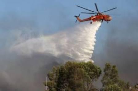 Habis Sudah Hutan Kami Nan Hijau di Bukit Suligi, Mereka Membakarnya Tanpa Ampun