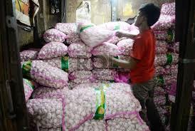 Pemko Pekanbaru Selidiki Distribusi Bawang Putih Impor Asal Tiongkok