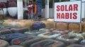 http://radarpekanbaru.com/assets/berita/thumb/45solar.jpg